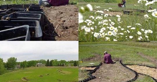 Він півроку скопував своє поле…Сусіди думали, що пенсіонер збожеволів…Але ось, що вийшло в результаті…