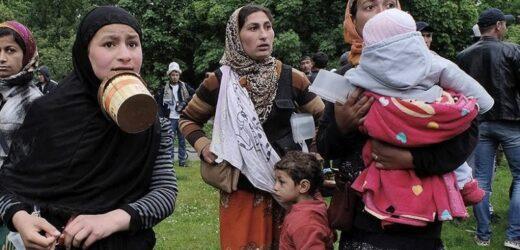 А ви і далі давайте їм подачки: Роми із Закарпаття заробляють по 30 000 гривень на місяць (ВІДЕО)